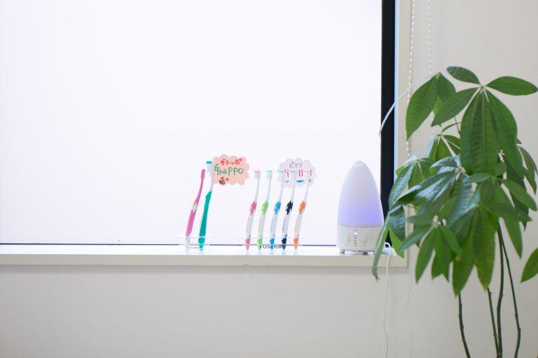 歯ブラシの見本